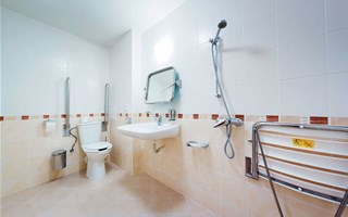 Bathroom for the disabled: rules for creating a safe environment
